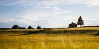 Na co zwrócić uwagę kupując nieruchomość?