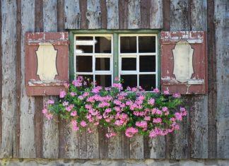 Nowoczesne domy na wsi