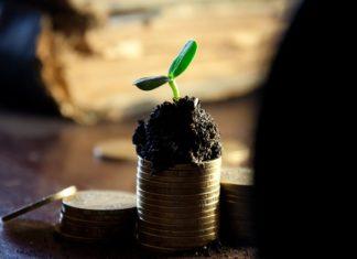 Dlaczego warto korzystać z doradztwa podatkowego?